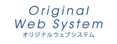 Original Web System